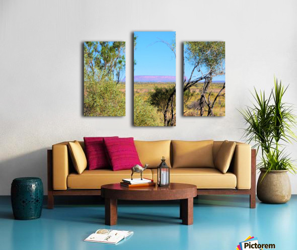 Outback6 Canvas print