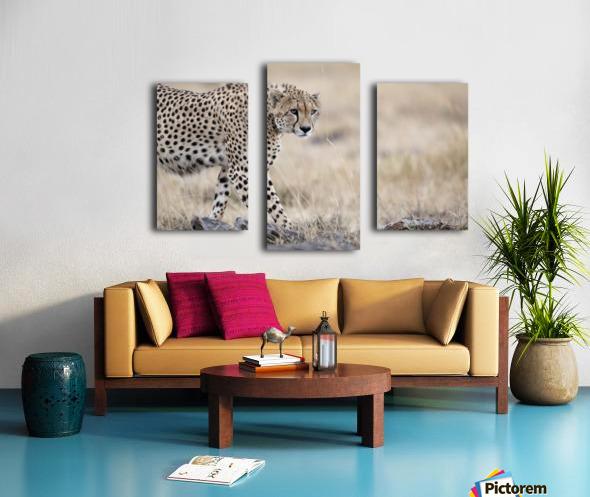 Cheetah Bro Canvas print