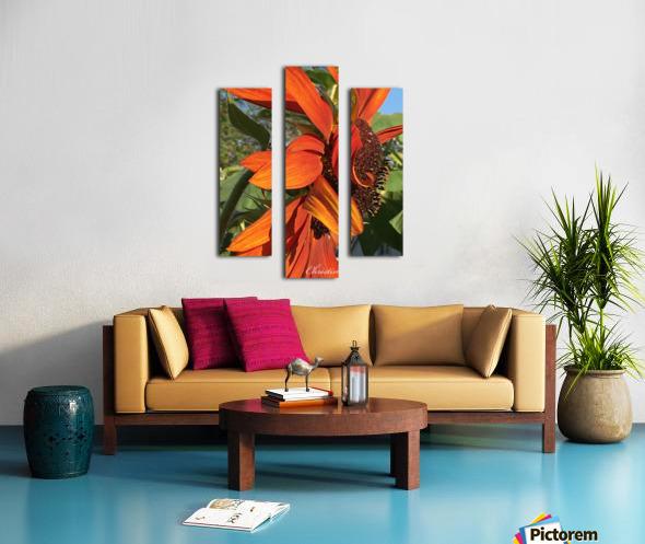 Sunflower seeds  Impression sur toile
