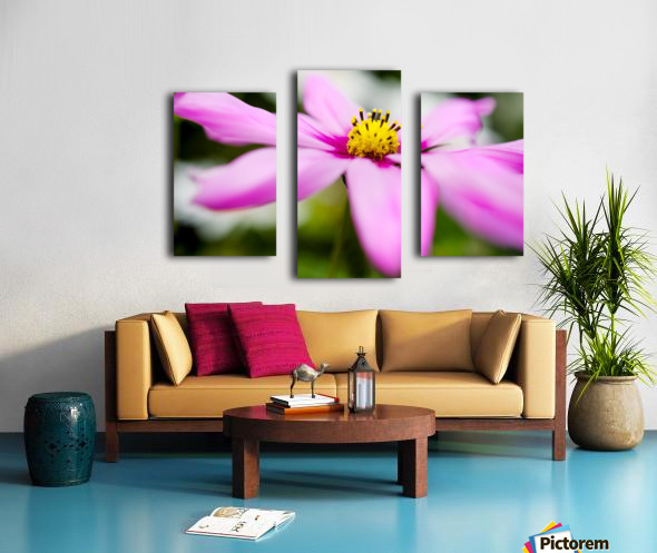 Pink and Flowing Canvas print