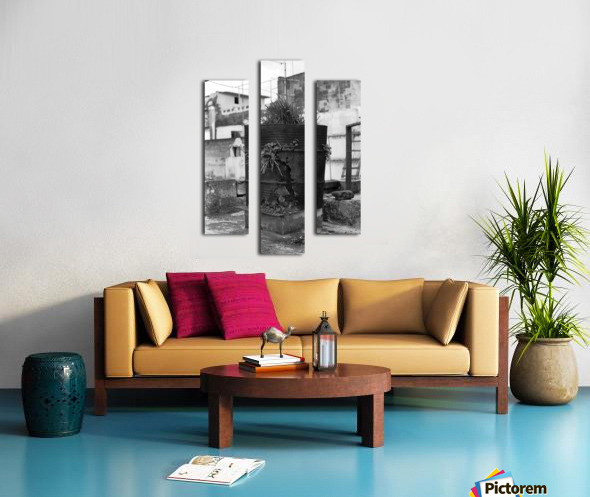 Fu Bidone Canvas print