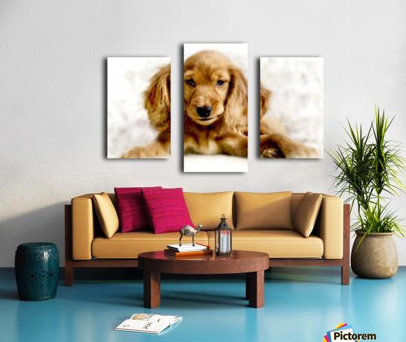 Cute Cocker Spaniel Puppy Canvas print