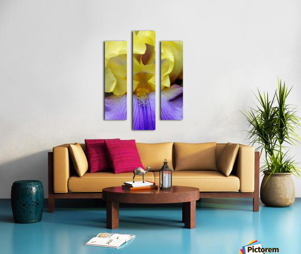 Lavender And Yellow Iris Heart Canvas print