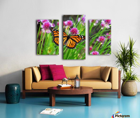 Monarch And Chives Canvas print