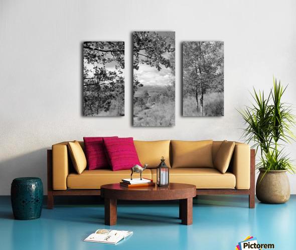 DSC01173 Canvas print