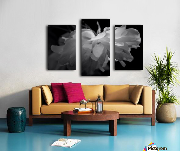 Tender Canvas print