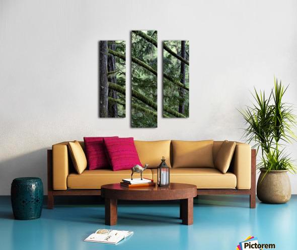 Rainforest Impression sur toile
