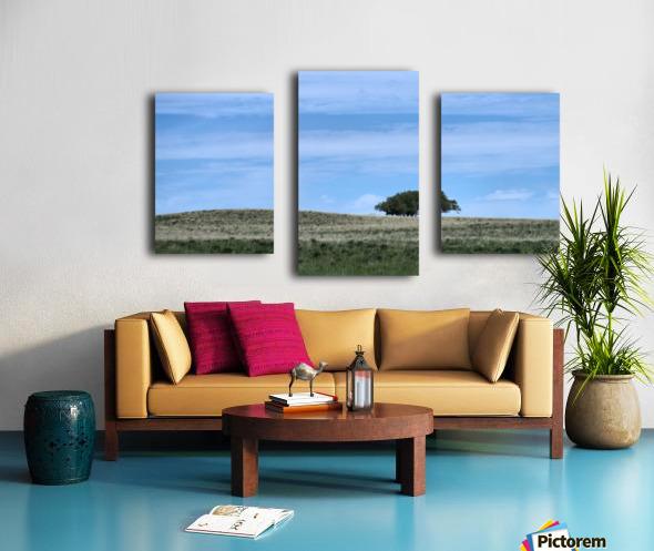 Prairie pleasantry Canvas print