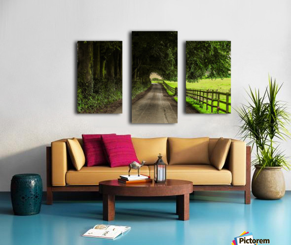 Beautiful Nature Landscape Tree Forest Trees Photography landscape photo Scenery Canvas print