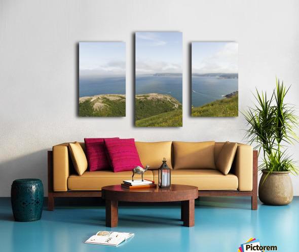 Vista from Signal Hill Canvas print