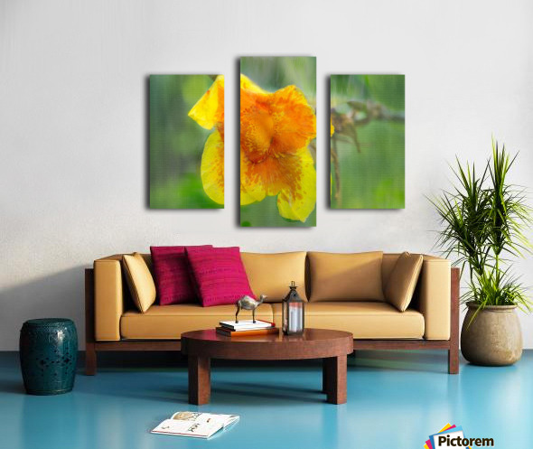 Canna Lily Digital Painting 52 70 200px Canvas print
