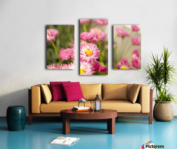 Blooms in the Garden Canvas print