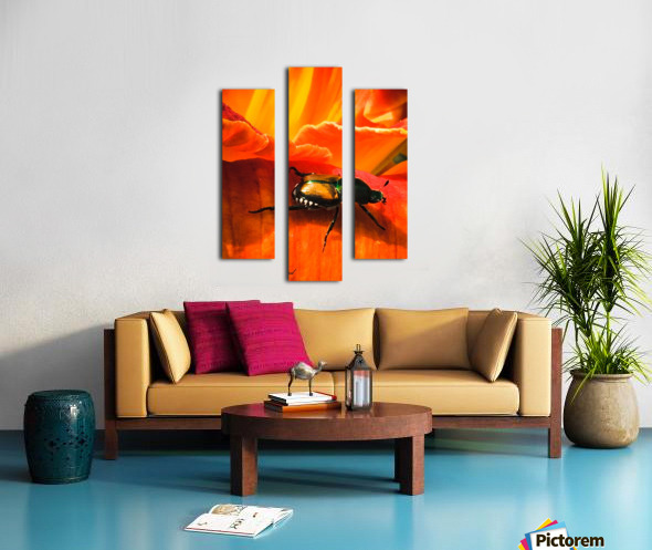 Forward  Impression sur toile