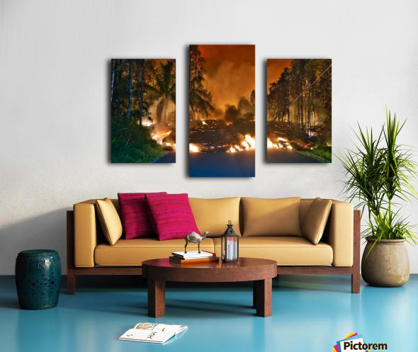 Makamae St Leilani estates Canvas print