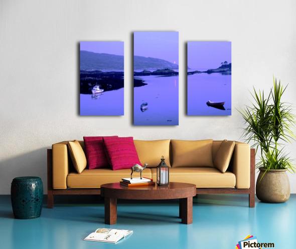 C 027 beara Canvas print