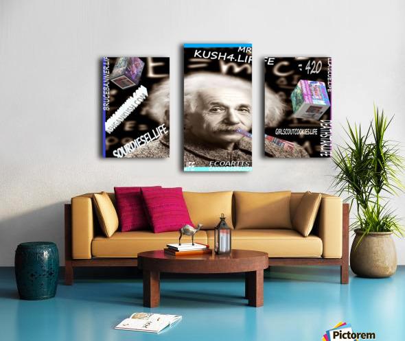 E=MC2=420  Canvas print