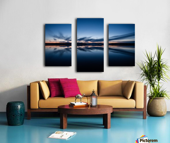 Feather skies Canvas print