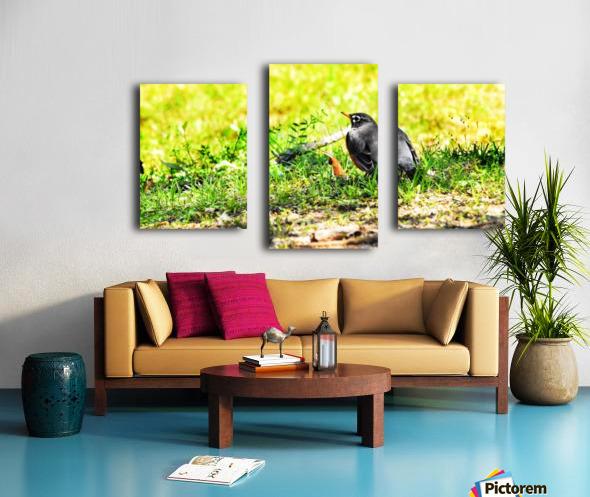 Vivid Robin Canvas print