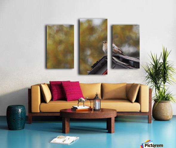 DSC_0026 Canvas print