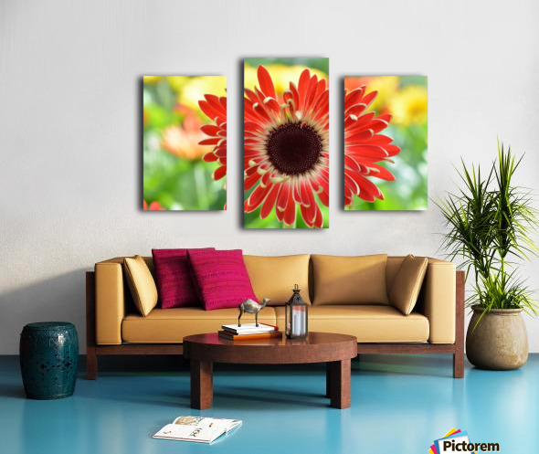 Red Flower Photograph Canvas print