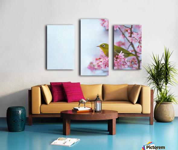 Bird In Sakura Cherry Blossom Tree Canvas print