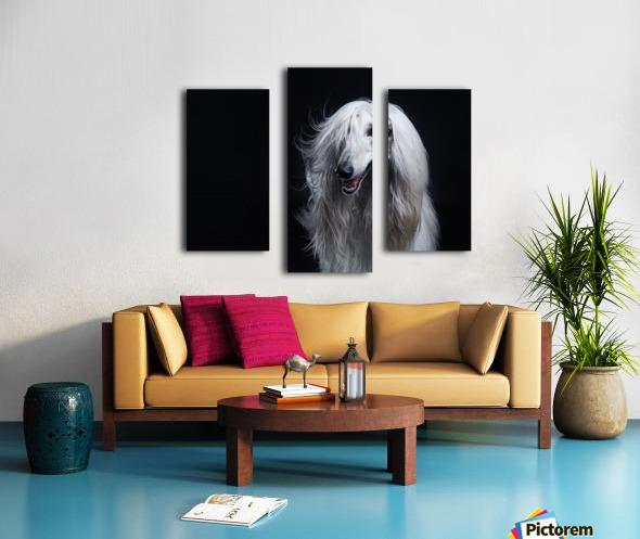 Afghan Hound Portrait Canvas print