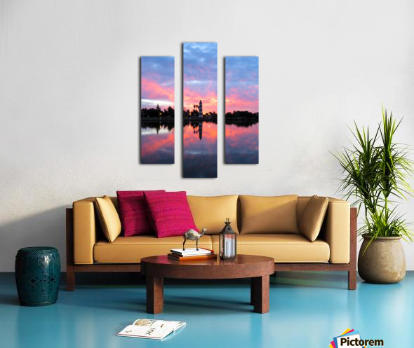 20190212 IMG_3242 3 Canvas print