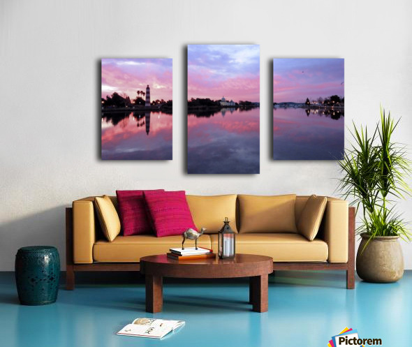 20190212 IMG_3250 3 Canvas print