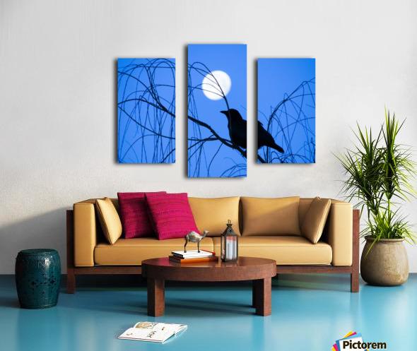 20190221 IMG_3305 2 Canvas print