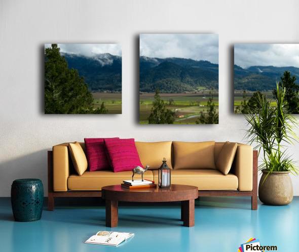 20190209 IMG_3182 Canvas print