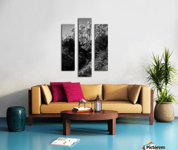 20190316 DSC_0136 2 Canvas print