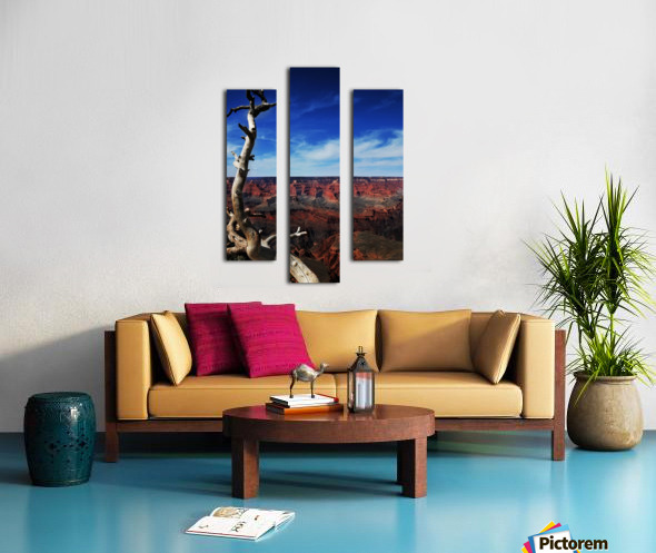Grand Canyon framed by tree Canvas print