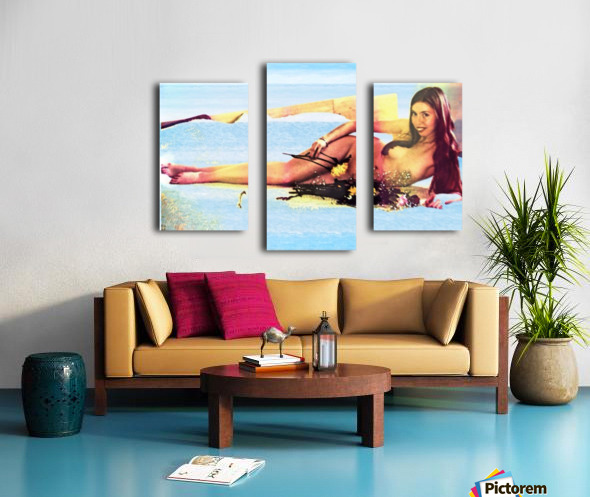 a mermaid in her home Canvas print