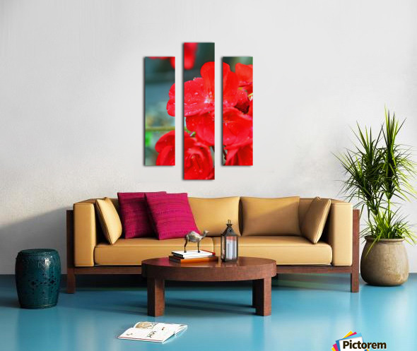 Elegantly Red Canvas print
