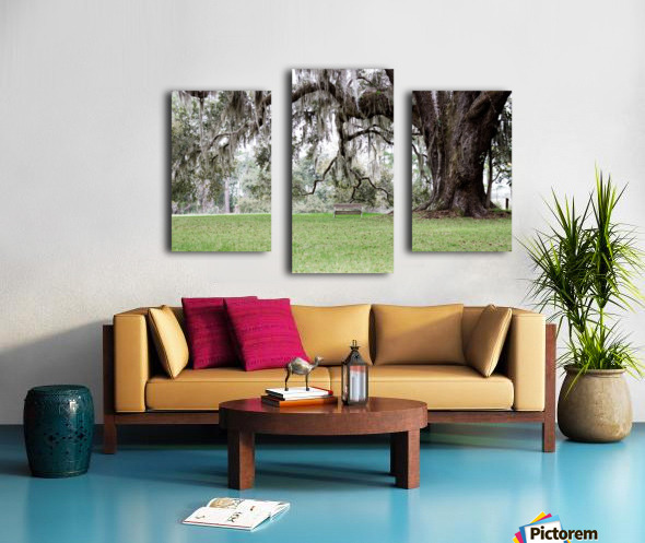 Hello Bubba Canvas print