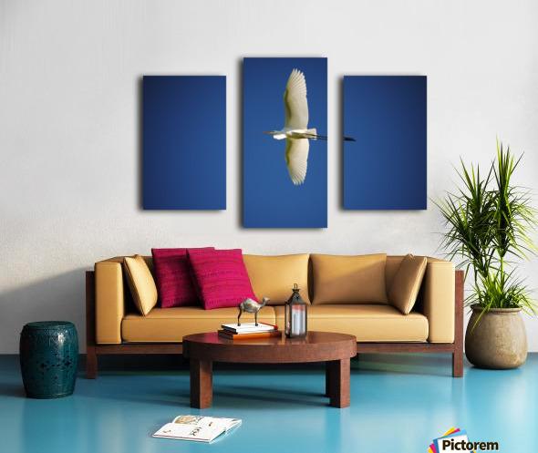 Egret Sailing Above Canvas print