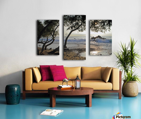 Wild Hawaii Beach Canvas print