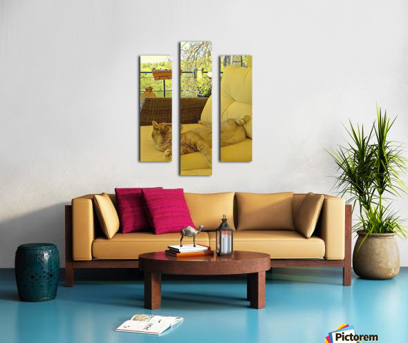 Lounging Around Canvas print