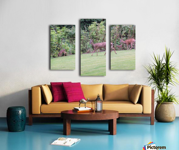 Deer Canvas print