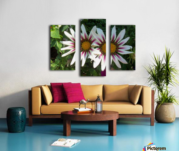 Saskatchewan Flowers Canvas print