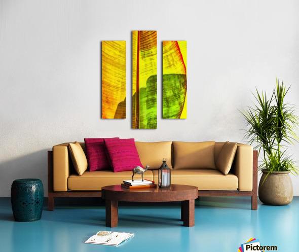 HC0333 Canvas print