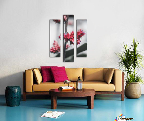 spiked flower Canvas print