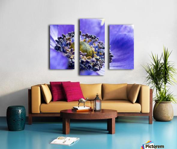 Blue Flower Anemone Close-up Macro Canvas print