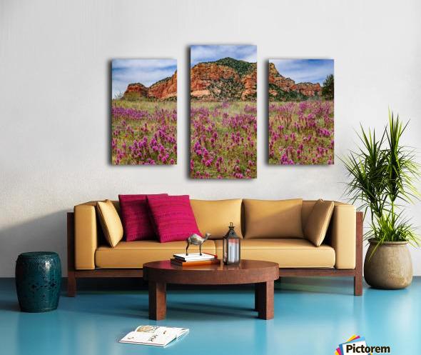 Clover Fields in Sedona Canvas print