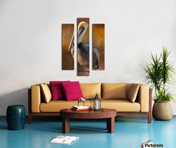 Brown Pelican Portrait Canvas print