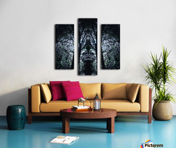 Lord of Shadows Canvas print