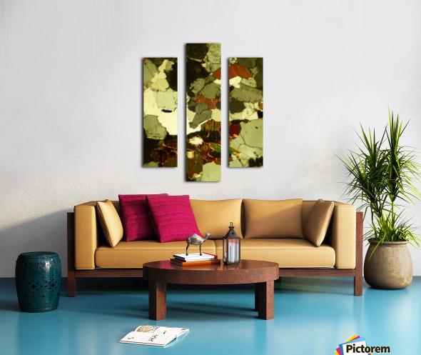 Forest Primeval Canvas print