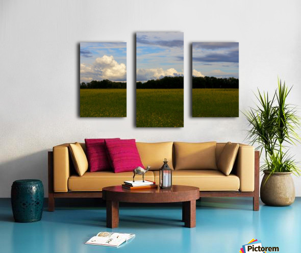 Champ ensoleille- Sunny field Canvas print