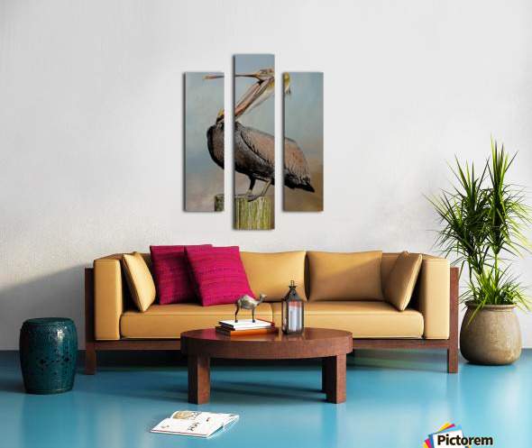 Belly Laugh-Brown Pelican  Canvas print