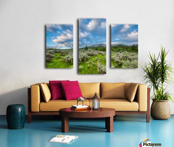 Goodenough Canyon Landscape Canvas print